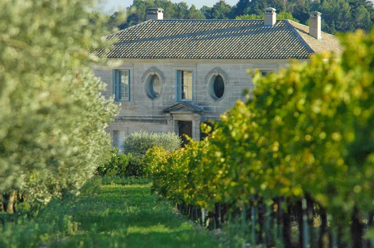 Photo-oliviers-vignes